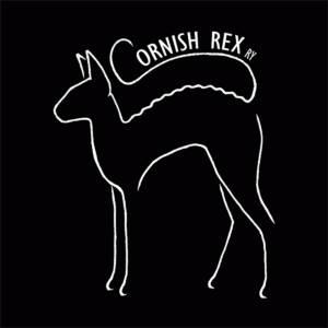 3coty® on Cornish rex ry:n ylpeä yhteistyökumppani, yhdistys kiharaturkkisille kissoille