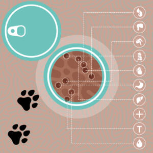 Alimentation naturelle du chat